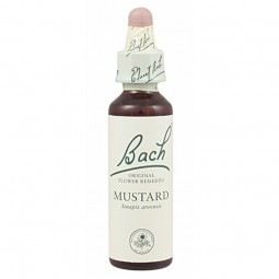 FLOR BACH Cherry Plum 20 ml Nº6